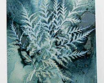 Botanical art card from an original wet cyanotype print of Molopospermum peloponnesiacum by Jill Welham from The Secret Garden Collection