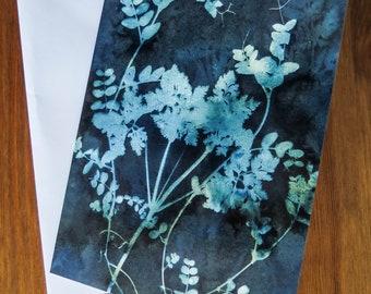 Botanical blank greetings card from an original wet cyanotype print of wildflowers by Jill Welham