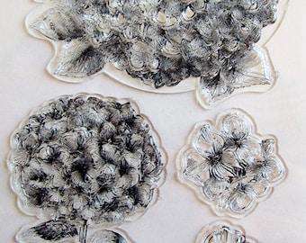 Set 4 Tampons transparents Hortensia