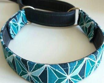 Leash collar / leash 2 in1 / dog leash / leash agility / accessory for dog / ar dog Pen