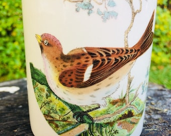 "Vintage Portmeirion birds of Britain storage jar canister - redpoll by Susan Williams-Ellis 5"""