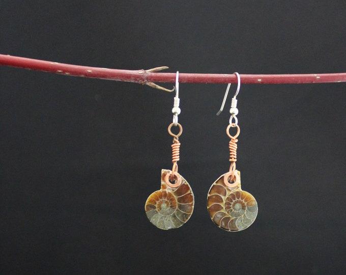 Ammonite Littles
