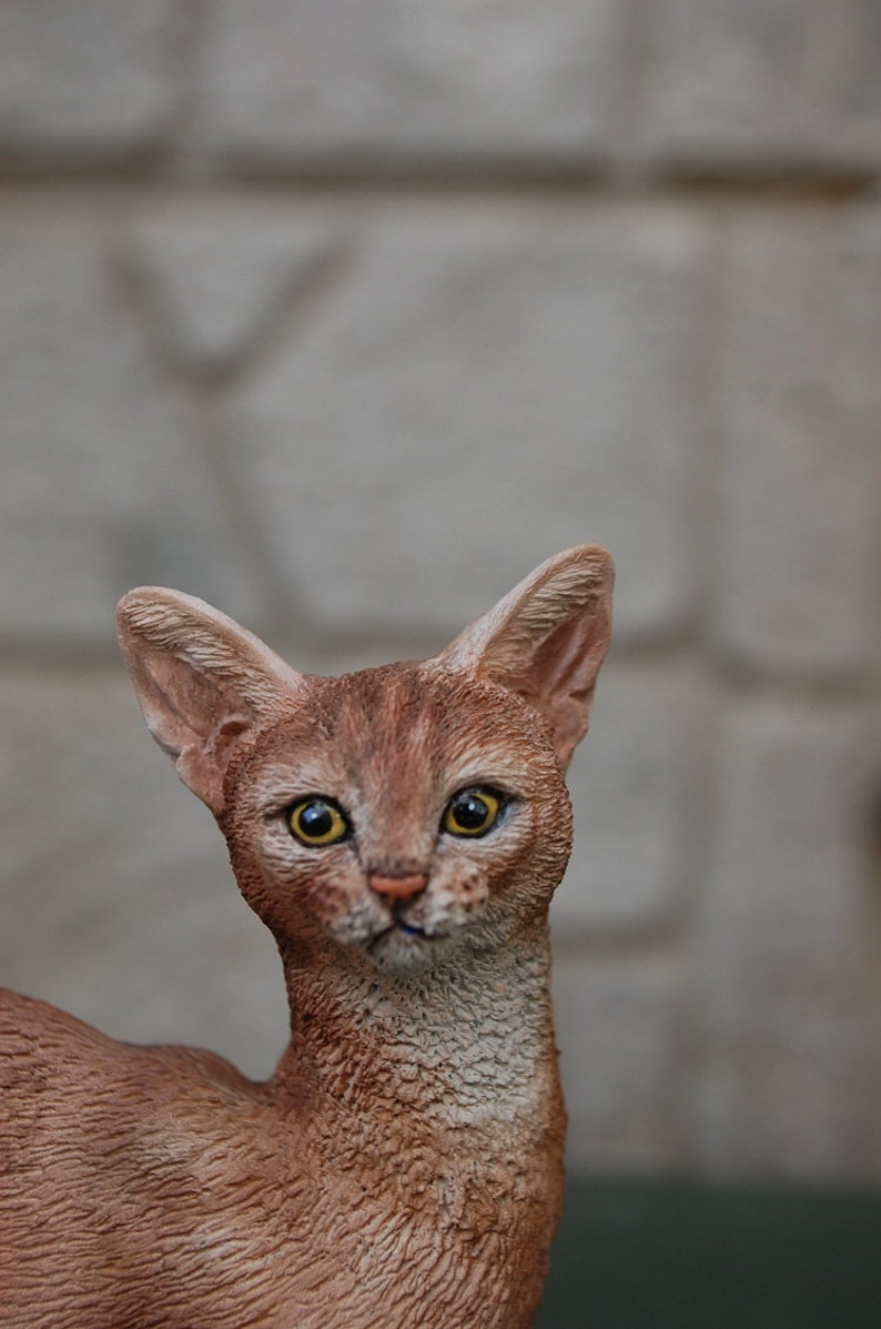 Abyssinian Cat Figurine Shall we take a walk together?