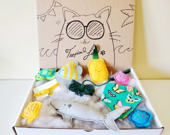 Summer Cat Bundle - Everything you need to welcome a new furiend - 9pc