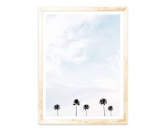 Posters, Palm trees, palmtrees, sky, holiday, summer