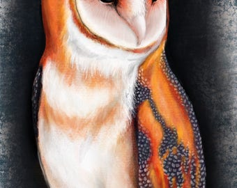 Paper Owl Print