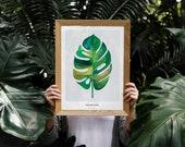 Monstera Leaf | Tropical ...