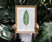 Banana Leaf Poster | Tropical Leaf | Foliage | Green Leaves Art | Tropical Decor | Botanical Art | Garden Art | Home Decor |Digital Download