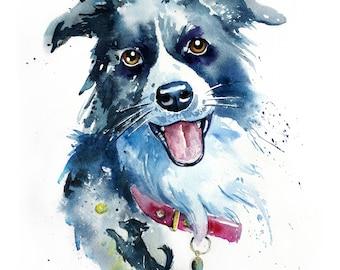 Border Collie PRINT.Original Watercolour Collie Portrait.Collie Painting print.Collie Art.Collie Poster.Collie wall art.DogPrint.Dog Art.