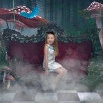 Digital Backdrops | Digital Backdrop | Digital Backgrounds | Alice in Wonderland Background |Alice in wonderland Backdrop | Fairy backdrop