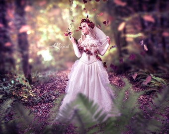 Digital Backdrop | Digital Background |Fall Backdrop | Photo Drop | Fairy Backdrop | Forest Backdrop | Photo Prop | Woods Backdrop | Fall