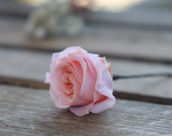 Mini stabilized rose on peak, bridal hairstyle peak, natural preserved flower for wedding, rose for hair, bridal hairstyle accessory