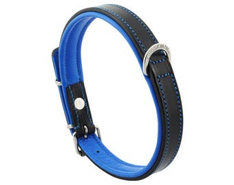 Premium Leather Blue Padded Dog Collar For Medium Size Dogs Neck 14 to 16 Inches Slim Light Weight Design For Complete Canine Comfort!