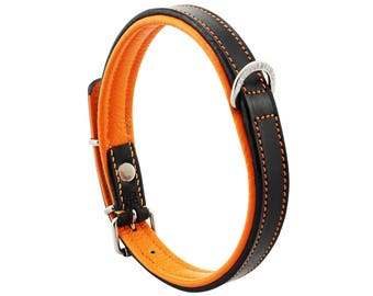 Premium Leather Orange Padded Dog Collar For Medium Size Dogs Neck 14 to 16 Inches Slim Light Weight Design For Complete Canine Comfort!