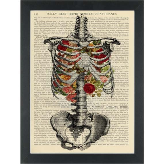 Anatomy Chest Ribs With Flowers Vintage Botanical Print Etsy