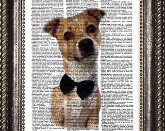 Jack Russel Terrier Etsy