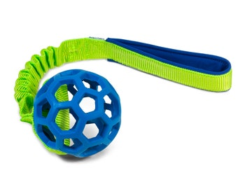 JW Pet Hol-EE Roller ball with bungee