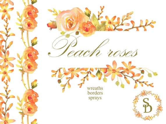 photograph about Printable Border referred to as Peach rose spray Watercolor wreath PNG Printable border Floral clipart Electronic picture Crocosmia bouquet Photograph body clear Reduce obtain