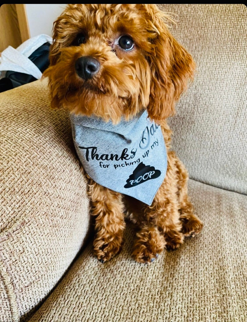 Thanks Dad For Picking Up My POOP Happy Fathers Day Funny Dog Bandana