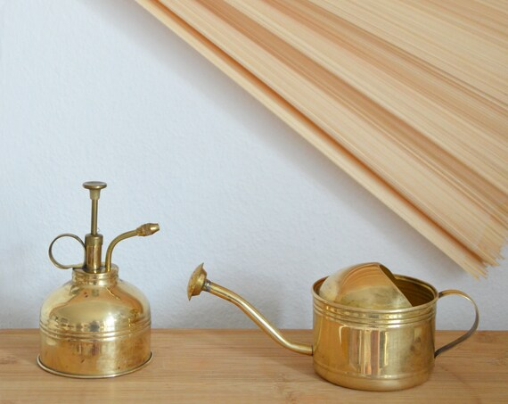 Vintage Succulentcare Set - Brass Watering Can & Plant Sprayer