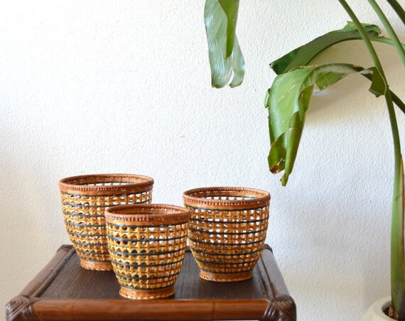 Set of three rattan flower pots Vintage wicker planter Plants green Boho