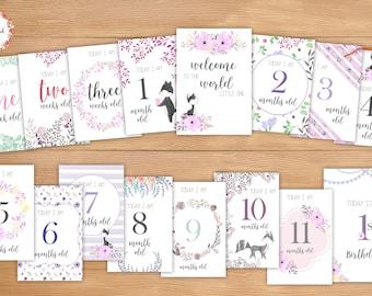Little Miss Fox Baby Milestone Cards_019