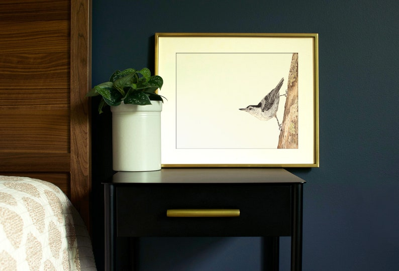 White-breasted Nuthatch Bird Art Print  Wildlife Art Print  image 0