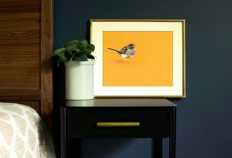 Junco Bird Art Print  Wildlife Art Print  Outdoor Gift  image 0