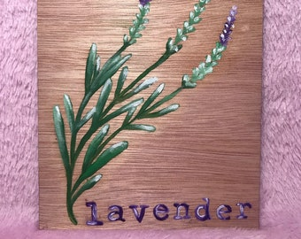Lovely Herb Paintings