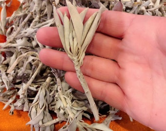 Loose White Sage Clusters and Leaves - Organic White Sage - 2oz Bag White Sage