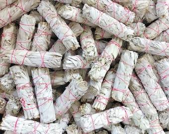 Wholesale White Sage Bundles - Bulk Sage - Organic White Sage Smudge Bundles - Wholesale Price