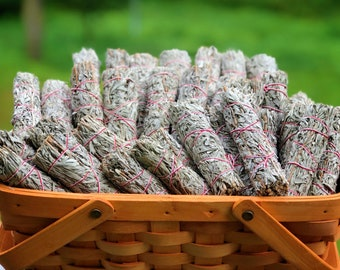 Blue Sage Smudge Sticks - Sold Individually - Organic - Native American Mini Size