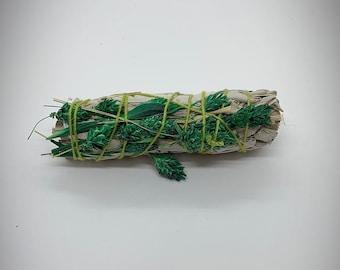 "Green Phalaris Grass White Sage - 4"" - Sold Individually - Natural Reed Grass"