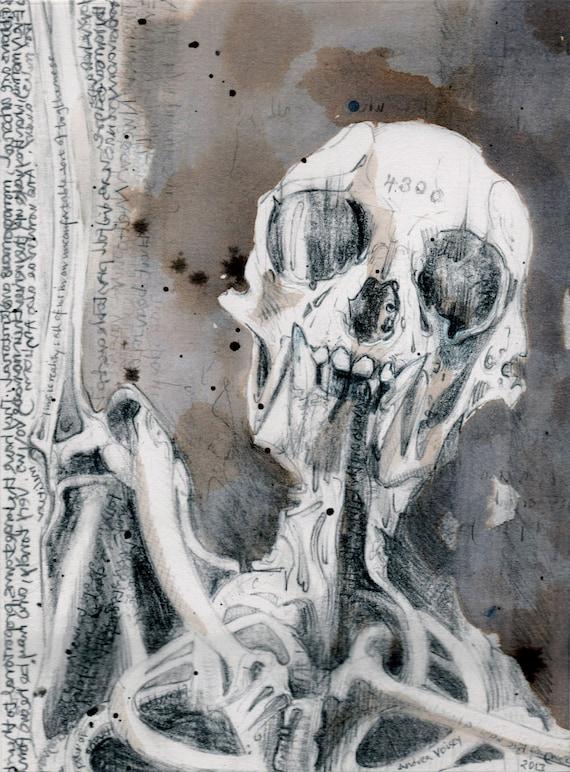 Gibbon Skelett Zeichnung Originalzeichnung | Etsy