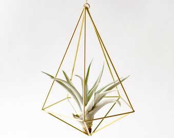 Air plant holder Himmeli Decahedron No. 02, brass planter, christmas gift, air plant container, airplants diamant, unique-gift-for-wife