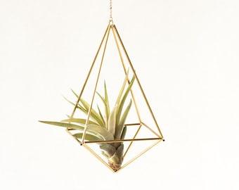 Luftpflanze Hänger Himmeli Octahedron Nr02, geometrisch gold Messing Design, geometrisch luftpflanze terrarium, blumenampel pflanzenampel