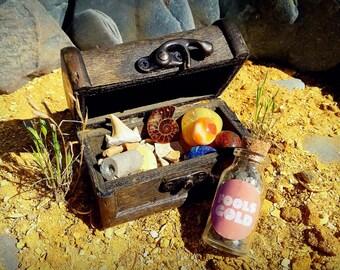 Fossil Treasure Chest [FS9404]