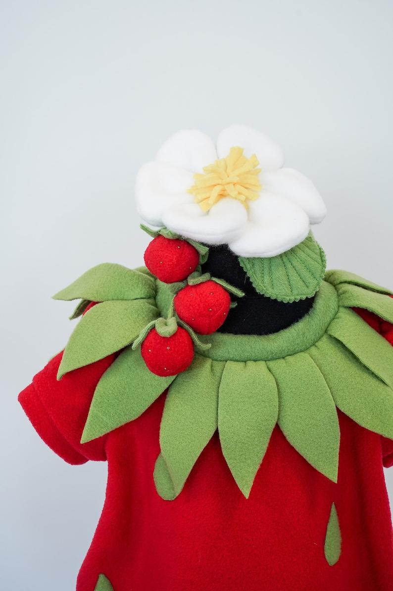 Halloween costume Fruit costume Handmade costume Strawberry Costume for Girls Kids Strawberry Costume
