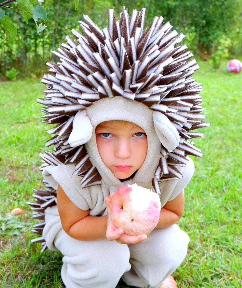 Hedgehog costume / Toddler Costume/ Kids Costume / hedgehog image 0