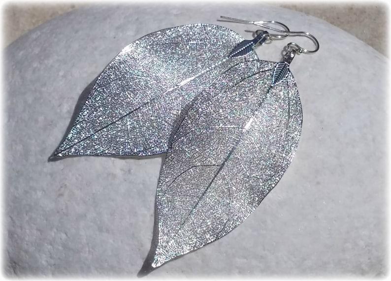 Real leaf earrings Silver leaf earrings Silver earrings Silver