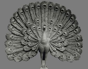 Sculpture, PEACOCK, Art Nouveau, consist of plaster of Paris
