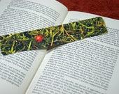 Cute Bookmark, Ladybird, ...