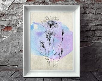 Daisy Print, Antique Botanical, Flower Print, Watercolor Print, Watercolor Flower, Floral Art, Botanical Art Printable Art, Instant Download