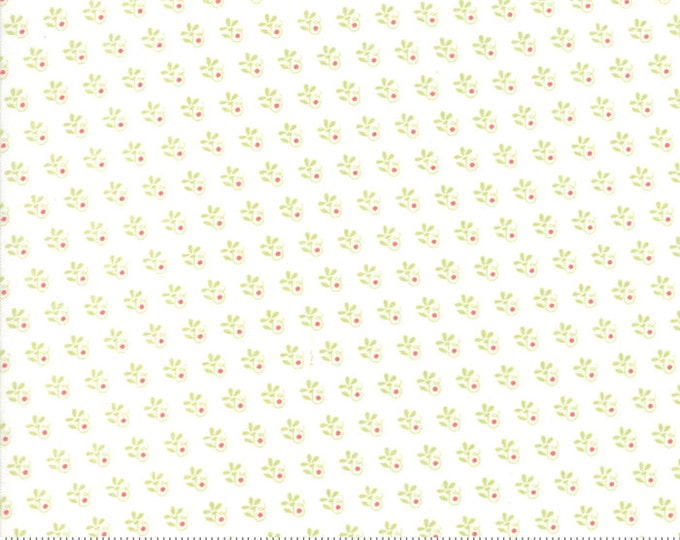 Moda - Catalina by Fig Tree Quilts - 20377-23 Green leaves on White