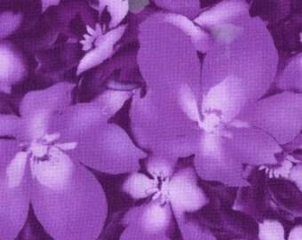 Violet #5 - Maywood Studios Ultraviolet - MAS8406-P3