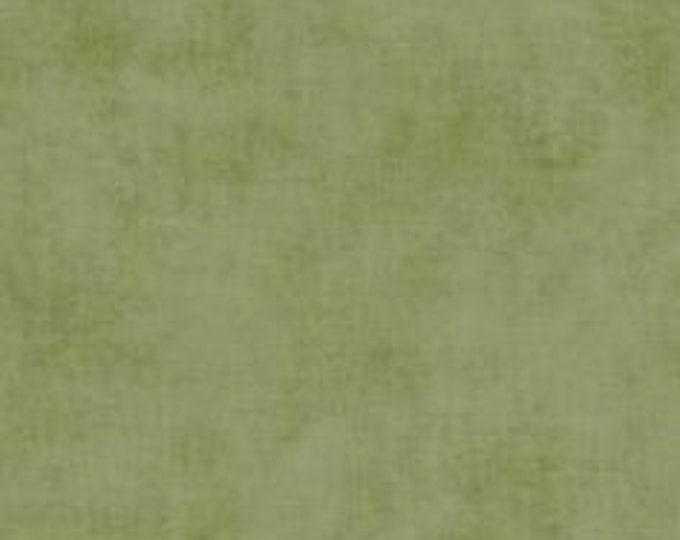 CLEARANCE - Riley Blake - Basic Shade - C200-48 Moss