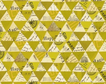Windham Fabrics - Wish by Carrie Bloomston - 51743M-5
