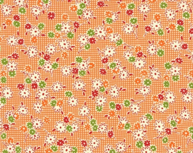 Moda - It's Elementary by American Jane - Orange - 21786-12