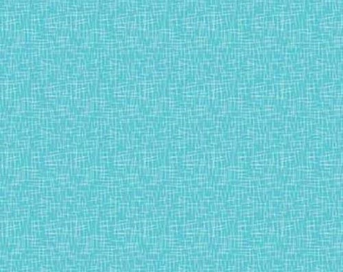 CLEARANCE - Riley Blake - Hashtag - C110 - Peacock