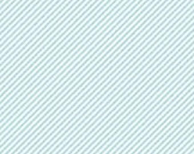 CLEARANCE - Riley Blake - Simple Goodness - C7931 - Aqua